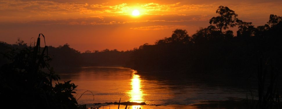 Amazon Tour Tambopata Peru