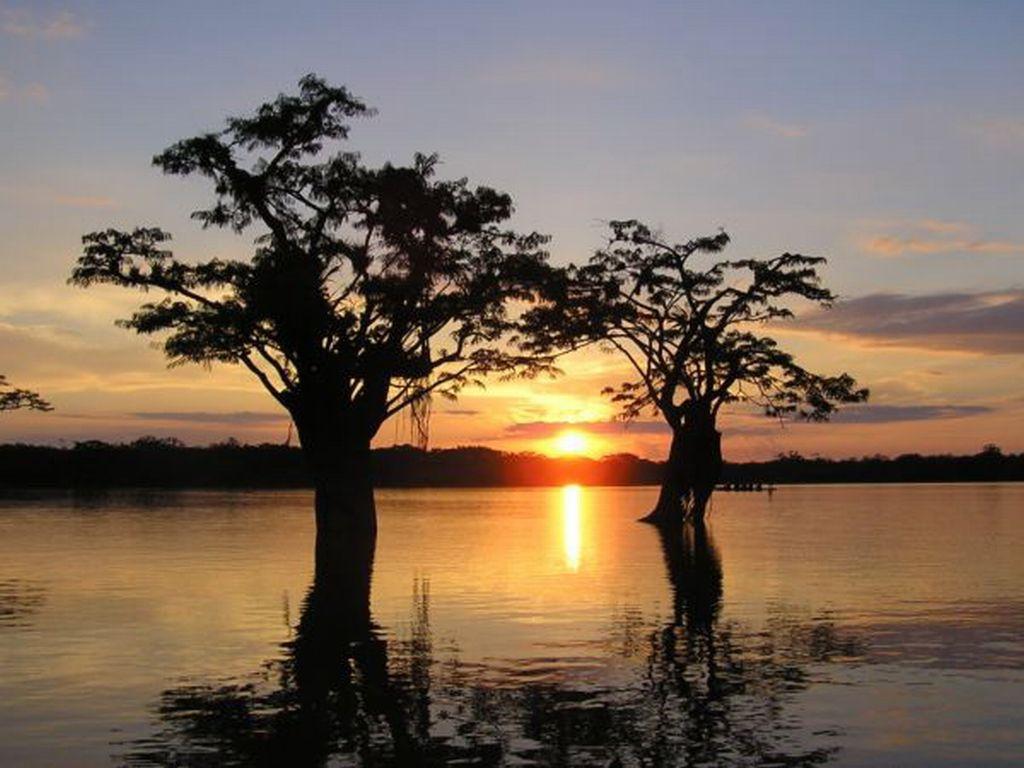 cuyabeno-amazon-reserve-ecuador