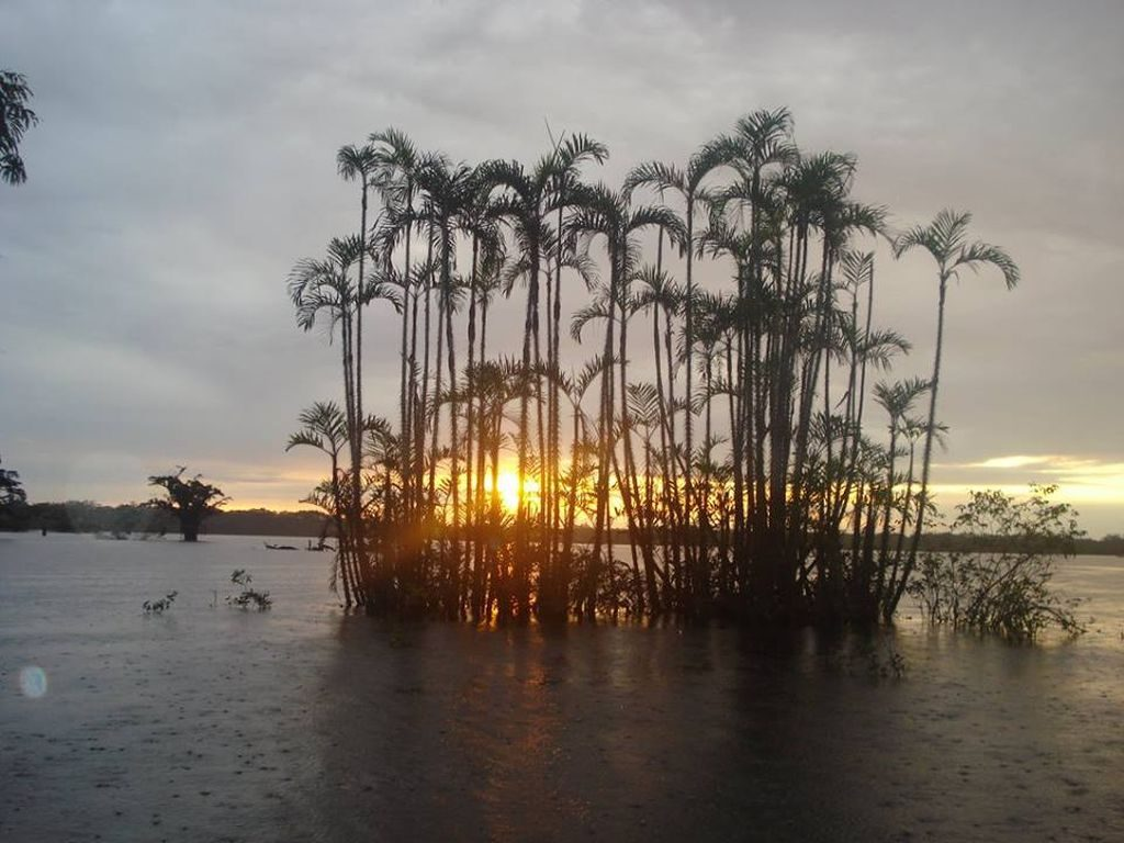 Sunset in Cuyabeno at the Siona Amazon Lodge in Ecuador