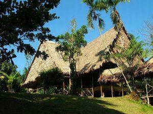 Sinchicuy Amazon Rainforest Lodge Iquitos Peru