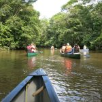 Canoe tour into the Cuyabeno Amazon Reserve in Ecuador