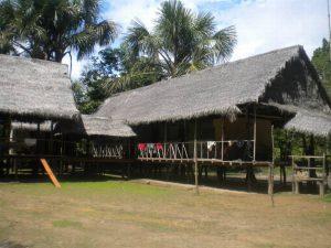 Dolphin Lodge Pacaya Samiria Amazon Peru