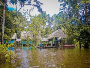 Dolphin Amazon Lodge Pacaya Samiria tours