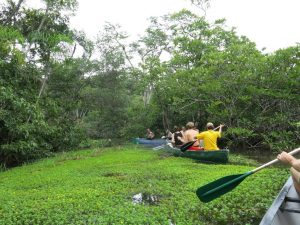 Canoe tour in Cuyabeno Amazon Rainforest Ecuador