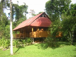 Pantiacolla Amazon cloudforest lodge Manu Peru