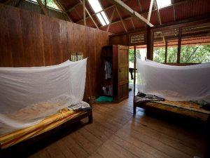Room Pantiacolla Amazon Lodge Manu Peru
