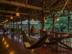 Hammocks at Tambopata Research Center rainforest Peru