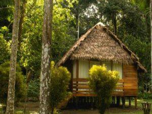 Cabin Wasaí Tambopata Amazon Lodge Peru