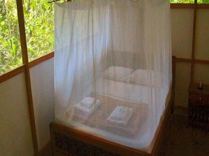 Bed Madidi Jungle Eco Lodge Amazon Bolivia